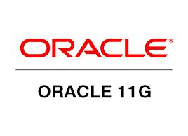 oracle dba 3 years experience resume samples